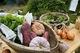 今月最後の土曜は新鮮な長浜野菜の店頭販売!