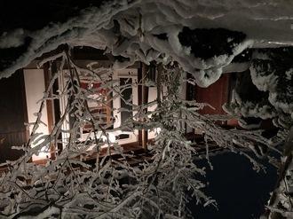 冬ならではのROKU!雪化粧したお庭もオススメです。